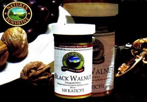 Прием настойки черного ореха против рака